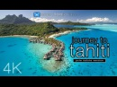 JOURNEY to TAHITI 4K UHD Nature Sounds Only Whales Beaches Ambient Film for Relaxation