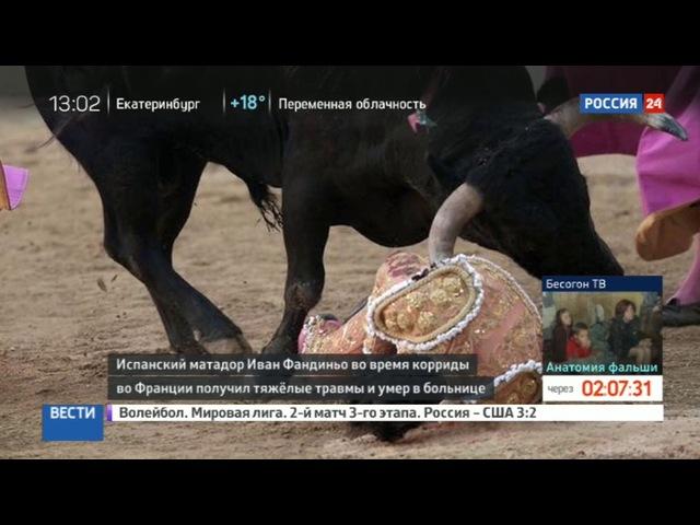 Новости на «Россия 24» • Сезон • Во Франции скончался испанский матадор, которого ранил бык