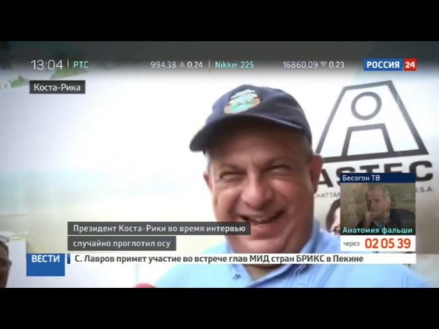 Новости на «Россия 24» • Сезон • Президент Коста-Рики проглотил осу