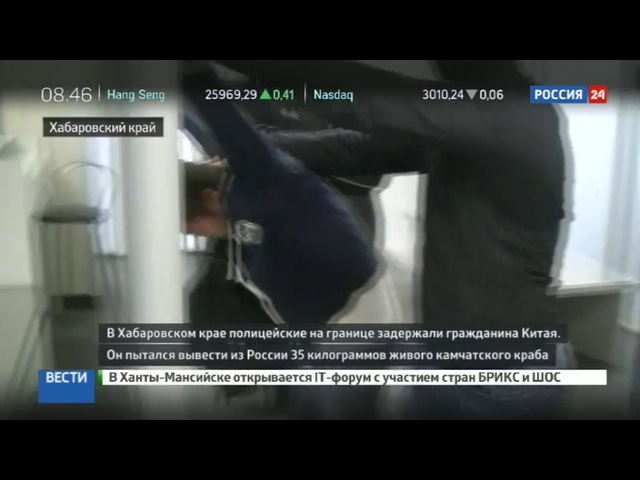 Новости на «Россия 24» • Сезон • На границе задержали китайца с 35 килограммами камчатского краба