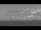 Кузнецов_022_HM_Черный Кофе - Владимирская Русь