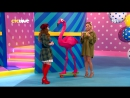 Анна Шульгина в шоу Короли дня на СТС Love