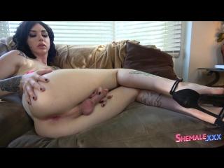 [shemale.xxx] annabelle lane / annabelle milks her cock! (29 sep 2017)
