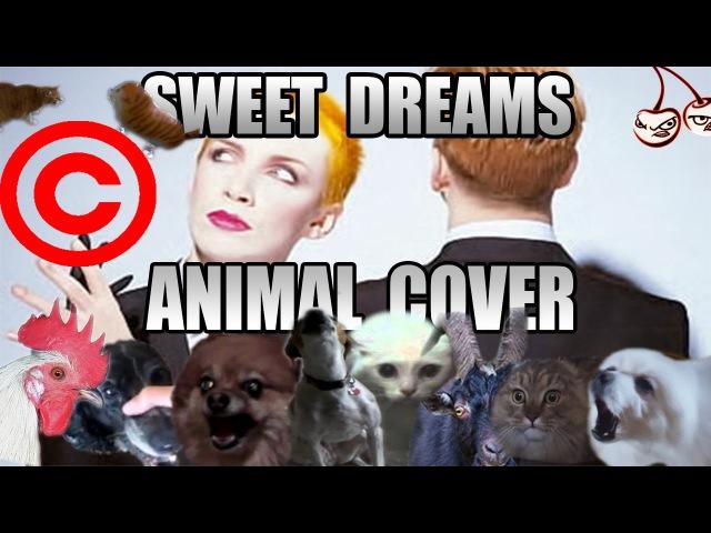 Eurythmics - Sweet Dreams (Animal Cover) [REUPLOAD]