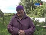 Житель села Спас Костромской области до смерти замучал собаку