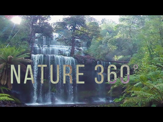 Virtual Nature 360° - 5K Nature Meditation for Daydream, Oculus, Gear VR