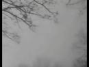Летят перелётные птицы Владимир Бунчиков 1948 год