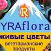YRAflora  Вологда ул. Ленинградская 138