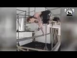 КОРОЛЬ Турника и брусьев - Andrea Larosa - ЧЕМПИОН Street Workout Мотивация