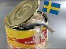 ТАК ДЕЛАЮТ ГНИЛУЮ СЕЛЕДКУ! СЮРСТРЕММИНГ Шведский деликатес