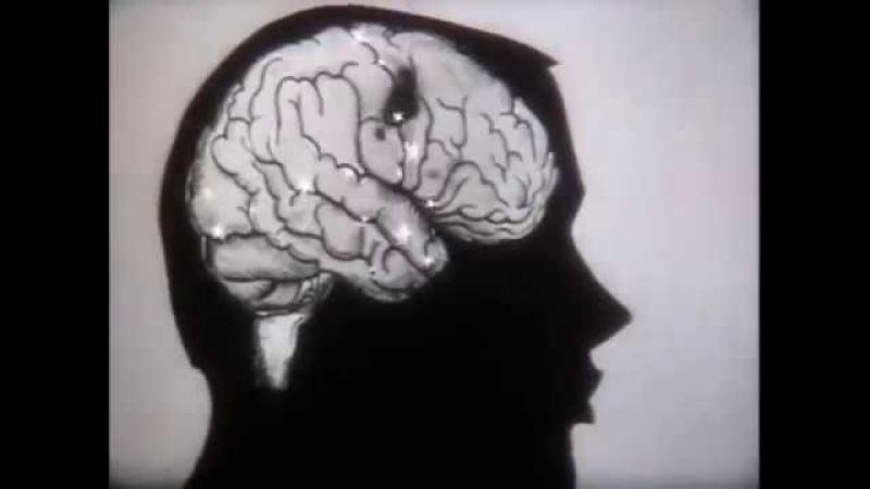 Влияние алкоголя и никотина на здоровье человека
