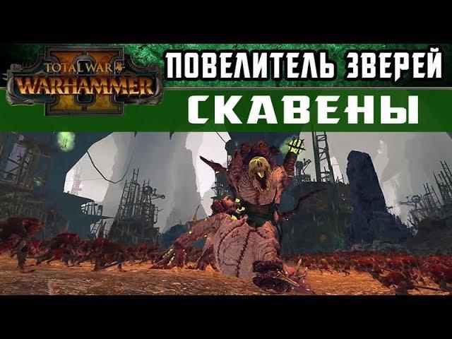 🇷🇺 Скавены - Инструктаж Повелителя зверей Total War WARHAMMER 2 (с переводом на русский)