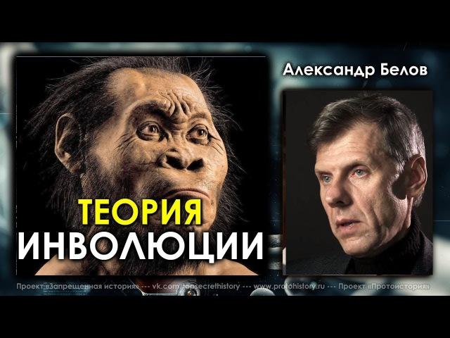 Александр Белов. Теория инволюции