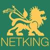 Компания Netking