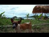 Мьянма - лучшее место для поисков своего Пляжа!