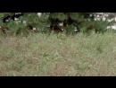 Лютер-пожиратель.1989.BLU-RAY_720p. Алексеев