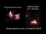 В Гомеле сгорели ночью 2 новогодние ёлки 2018