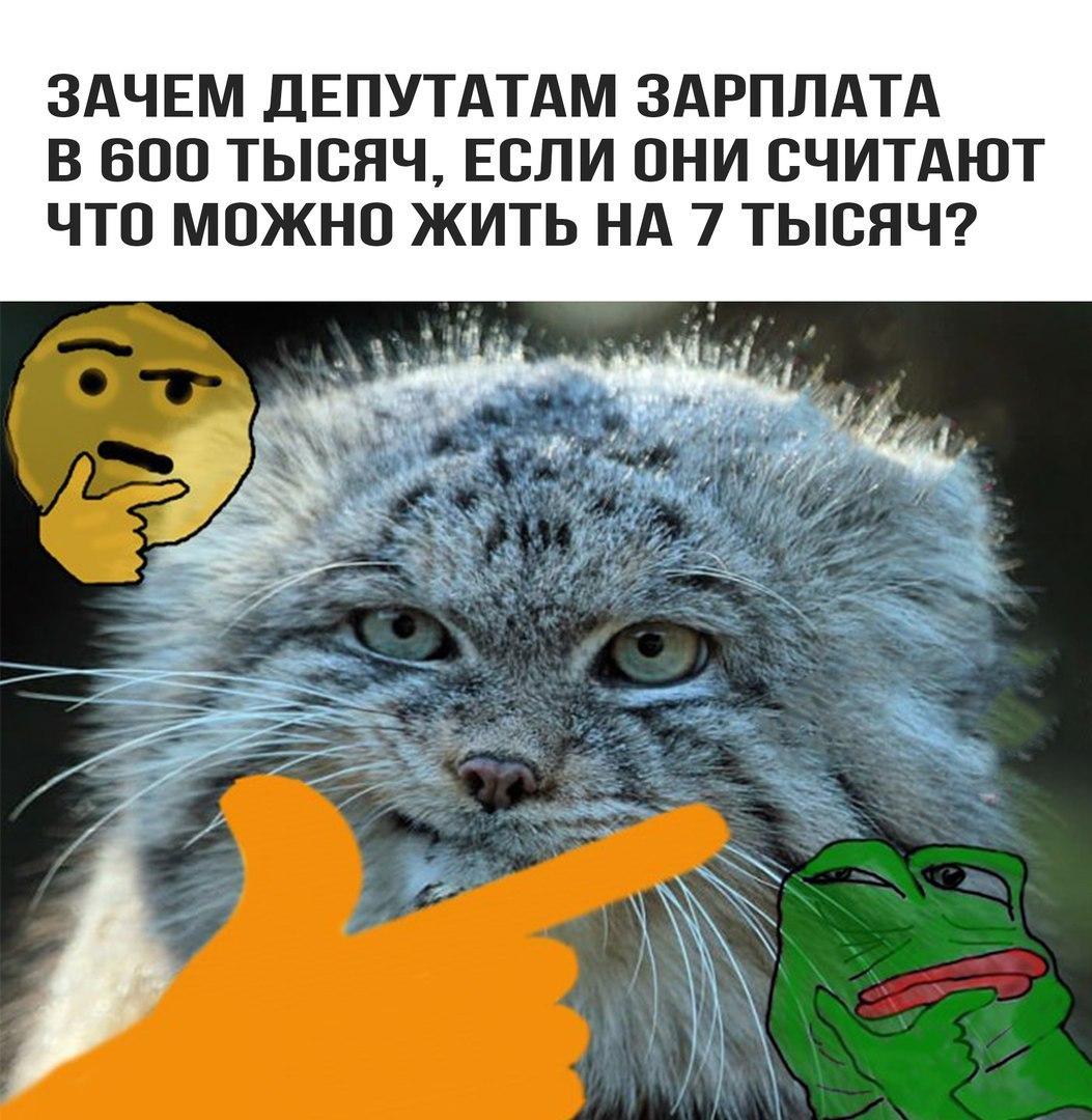 https://pp.userapi.com/c841537/v841537294/50d9d/S0HOHTFgltA.jpg