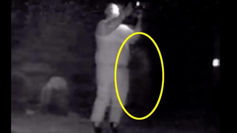 Чёрный призрак попал на видеозапись