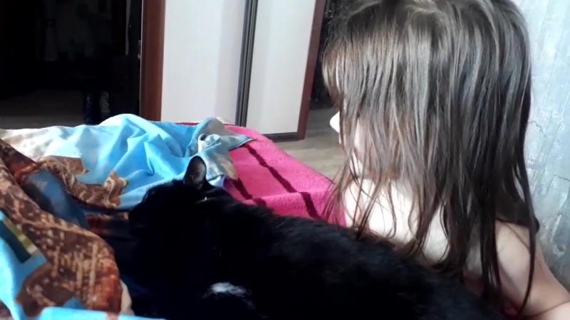 Мила мешает Барсику спать