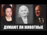 Татьяна Черниговская &amp Сергей Капица &amp Зоя Зорина Думают ли животные