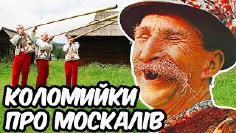Коломийки Про Москалів - Супер Збірка Закарпатських Коломийок Про Москалів (Українські пісні)