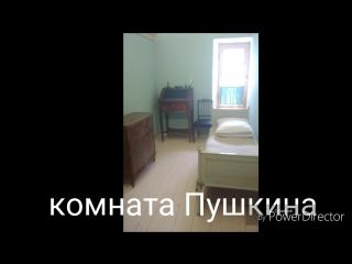 экскурсия в Пушкинский лицей