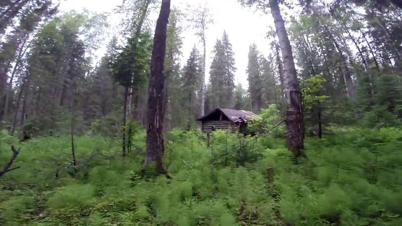 Лесная изба ( 20 лет спустя ) новая печь и крыша , рыбалка на дикой реке ...