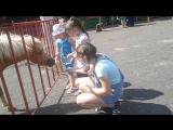 В зоопарке)))))