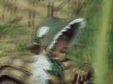 Рина Зеленая - Романс черепахи Тортилы1