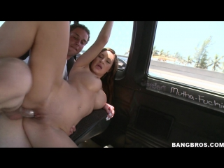 [bangbus] fine a$$ amy reid will rock your world