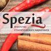 """Агентство стратегического маркетинга """"Spezia"""""""