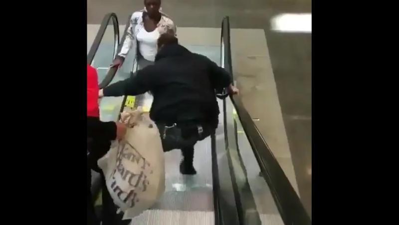 Погоня за грабителем