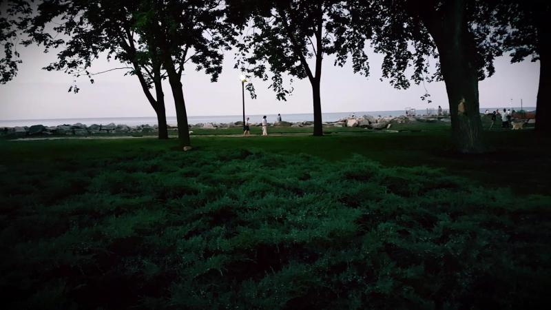 Світлячки) в парку