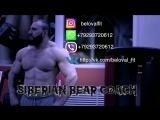 Тренируйся с #SiberianBearCoach