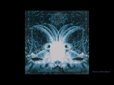 Darkthrone Goatlord Full-length Release date 1996
