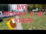 vlog/Влог#1, прогулка  в лес, октябрь, залаз на мост, танцы и дреовлазание