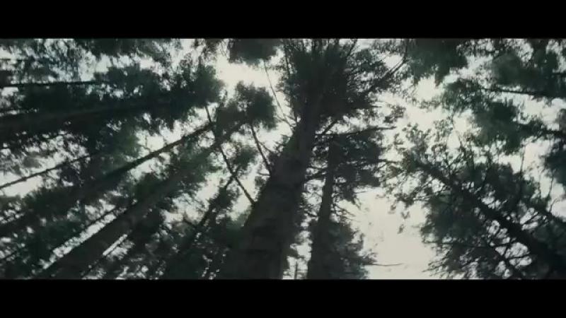 Трейлер Озеро идолов (2013) - SomeFilm.ru