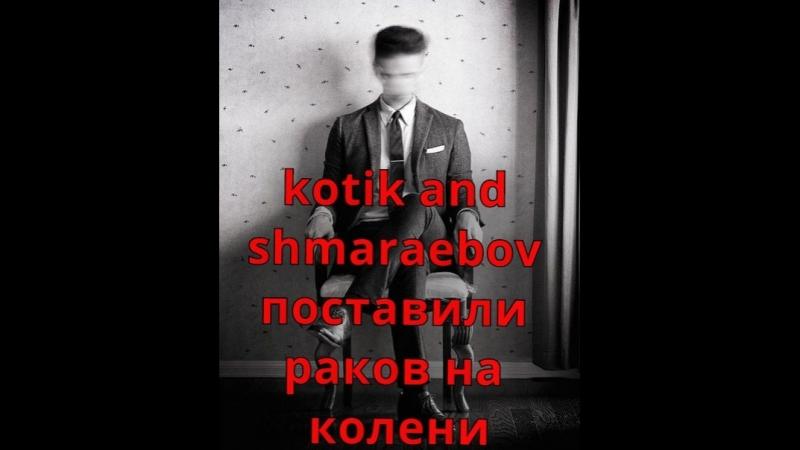 Shmaraebov and kotik хуем дали по ебалу ракам