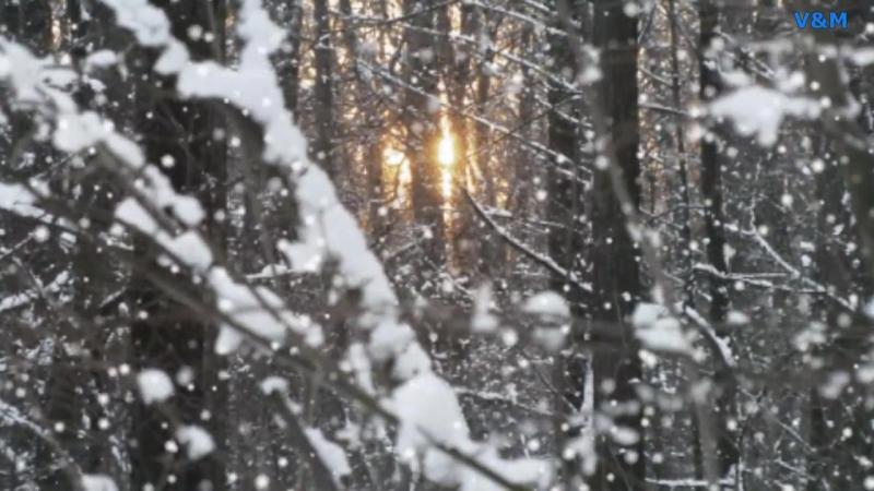 08 Тихо падает снег