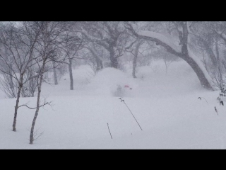 """Nicolas Müller in """"The Hollow Boned Bird"""" – Unseen Clips from Fruition"""