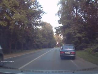 Лось на дорогу выбежал