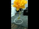жёлтый почтовый гигантский пион цветок из бумаги