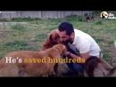 В его стране проблемы с приютами для животных поэтому он построил собственный Золотой человек