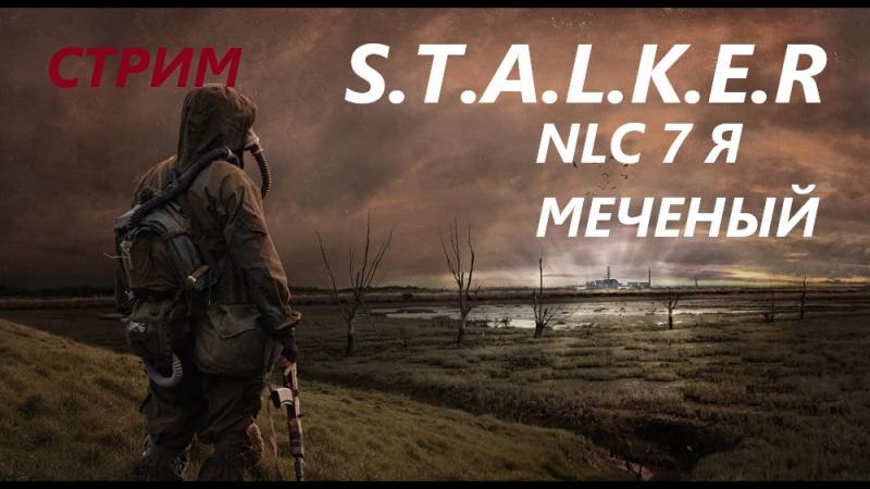 S T A L K E R nlc 7 я меченый стрим онлайн 2