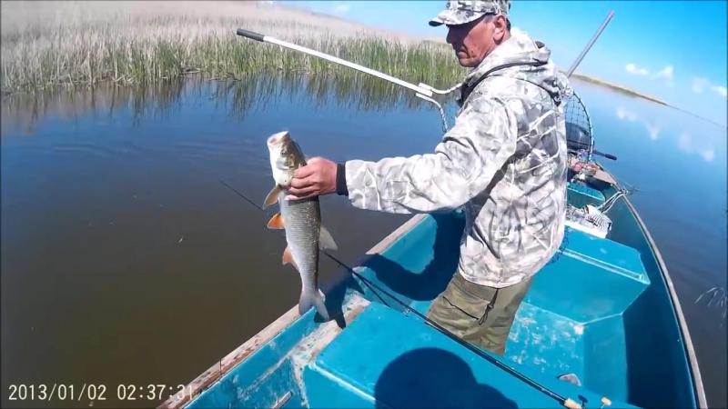 УХХХ! Очень крутая рыбалка. Астрахань, дельта волги, май 2015
