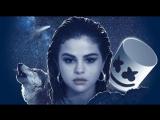 Selena Gomez - Wolves (OV 2017)