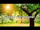 Ярославна Гордаш live