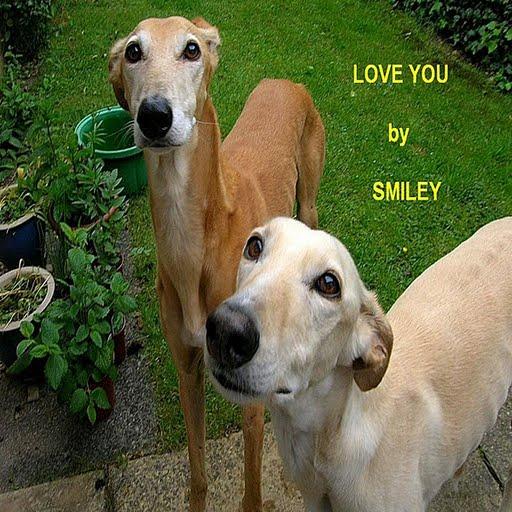 Smiley альбом Love You