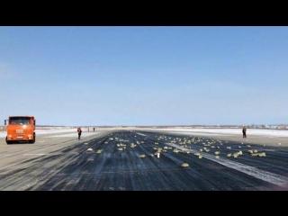 Жители Якутска бросились на поиски упавших с неба золотых слитков